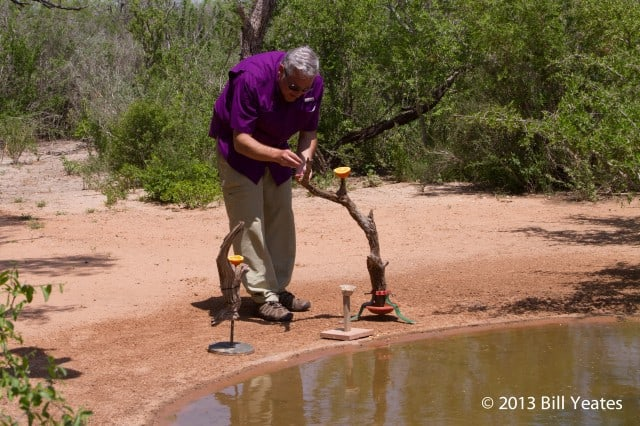 Jeff Wendorff sets up a perch for his South Texas Bird Photography Workshop.